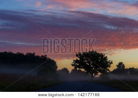 country road at sunrise, Novgorod oblast, Russia