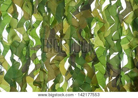 Closeup camouflage pattern net for hiding, disguising. Detailed texture of leaf on white background