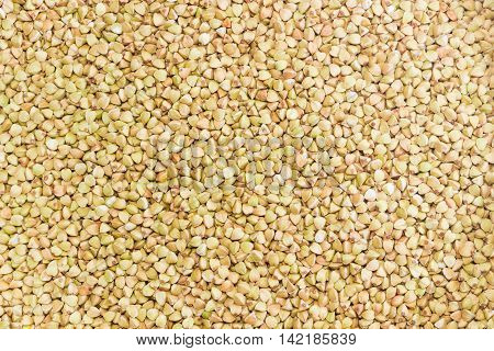 Background of a buckwheat groats peeled from the husk