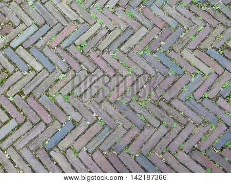 Herringbone patterned paving with weeds in Dutch village