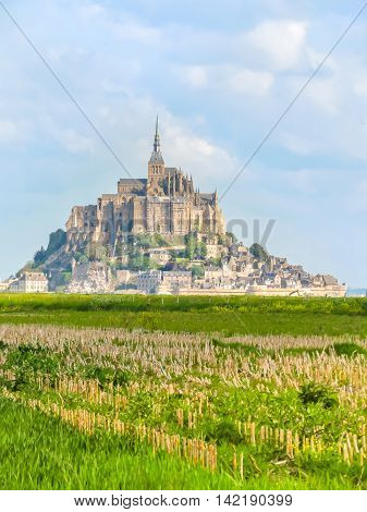 Landscape of Normandy and Mont Saint-Michel as background. Normandy, France