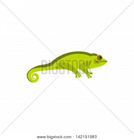 Chameleon icon in flat style on a white background