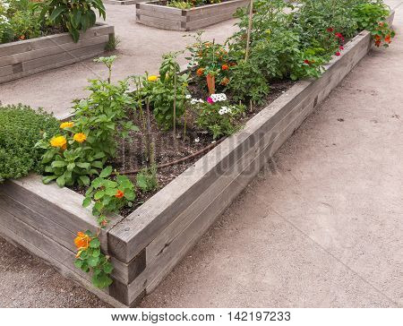 Raised garden beds in neighborhood garden with flowers