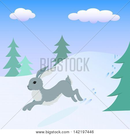 Gray hare running in the winter forest.