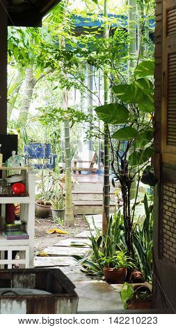 Garden Decorate nature have wood chair in house