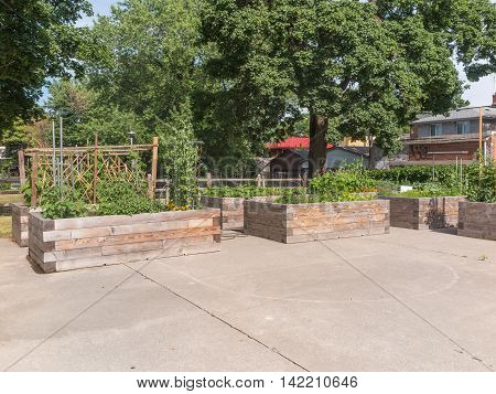 Raised garden beds in neighborhood garden with trees