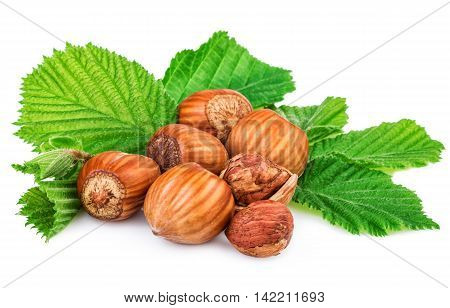 Filberts with leaf isolated on white background