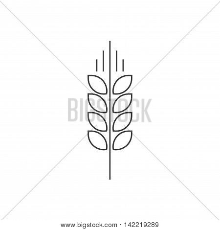 Wheat spike vector logo isolated on white, grain ear icon element for organic food design, outline thin line style black spica symbol