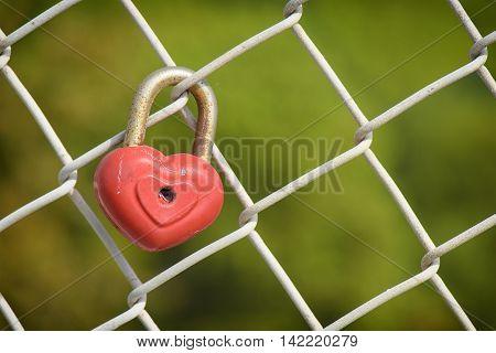 beautiful red heart shaped padlock locked on iron chain