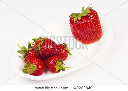 Organic strawberries and a big GMO strawberry are on white plate on white background.