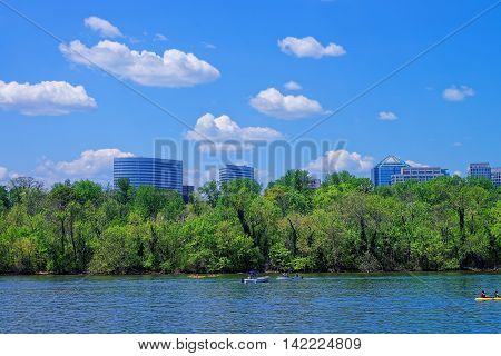 Line Of Trees And A Sky With Beautiful Clouds