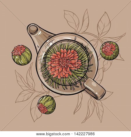 Vector Illustration with flowering tea in  teapot on brown  background