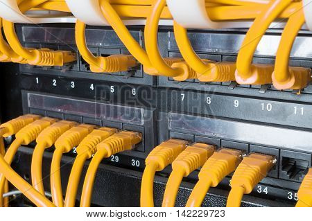 Close up of yellow network internet cables patch cords connected to black switch router in data center
