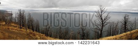 Panoramic view of Yellowstone lake on a cloudy day (Wyoming, USA)