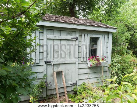 Old fashioned Wooden garden shed with foliage