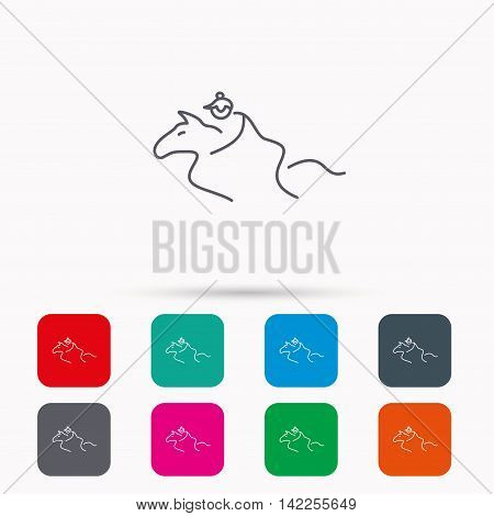 Horseback riding icon. Jockey rider sign. Horse sport symbol. Linear icons in squares on white background. Flat web symbols. Vector