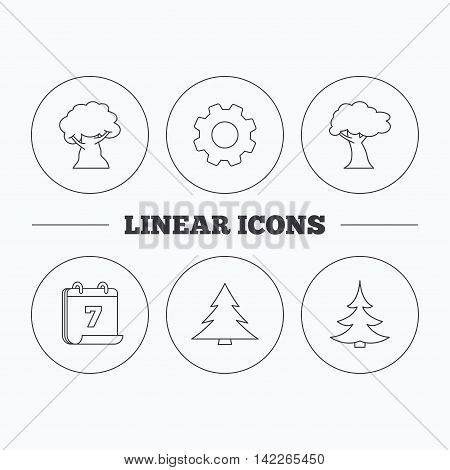 Tree, oak-tree and christmas tree icons. Forest trees linear signs. Flat cogwheel and calendar symbols. Linear icons in circle buttons. Vector