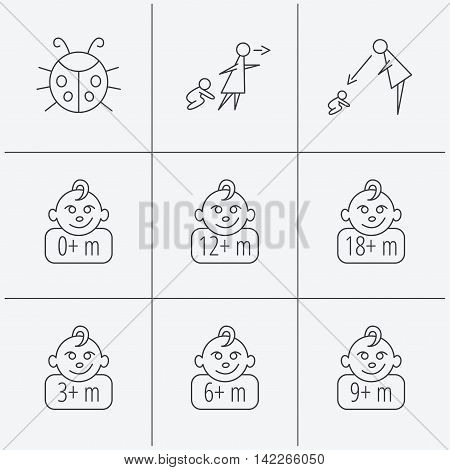 Infant child, ladybug and toddler baby icons. 0-18 months child linear signs. Unattended, parents supervision icons. Linear icons on white background. Vector