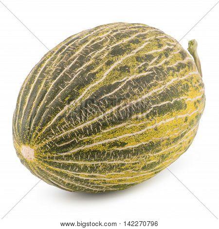 One Fresh whole Piel de sapo melon on white background. Selective focus.