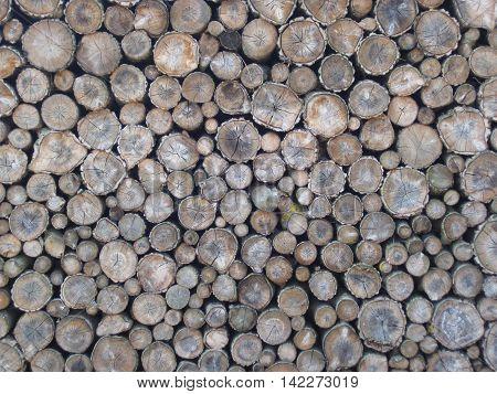 Firewood Natural Texture