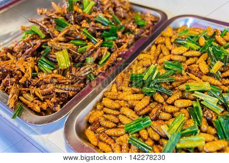 Fried insects food in a local market. Ayutthaya Thailand