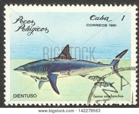 MOSCOW RUSSIA - CIRCA MAY 2016: a post stamp printed in CUBA shows Isurus oxyrinchus the series