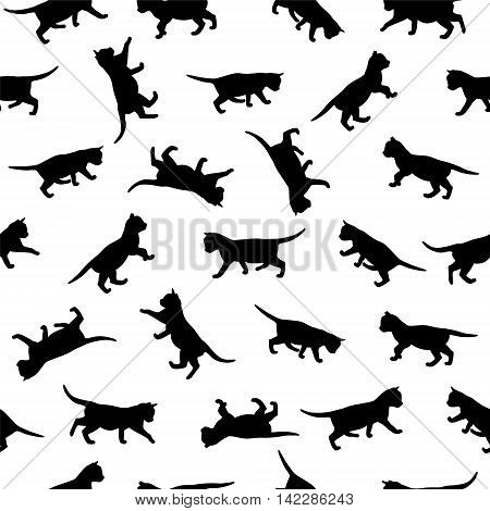 Seamless vector patten - kitten black silhouettes