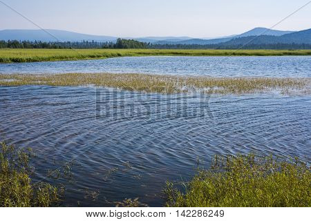 North river Kika forms extensive meadows full of different plants and animals in the place where it flows into lake Baikal.