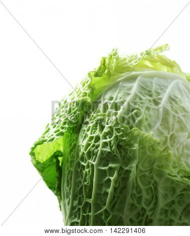 Fresh savoy cabbage isolated on white
