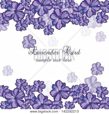 Lavender color flowers Card Border. Gentle blossom floral bouquet. Vintage Label with lavender beautiful fragrance. Vector