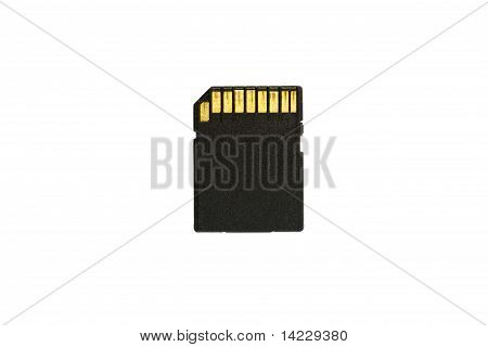 SD Card isolated on white