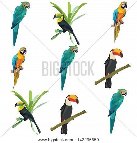 Colorful Parrots set collection isolated Vector illustration