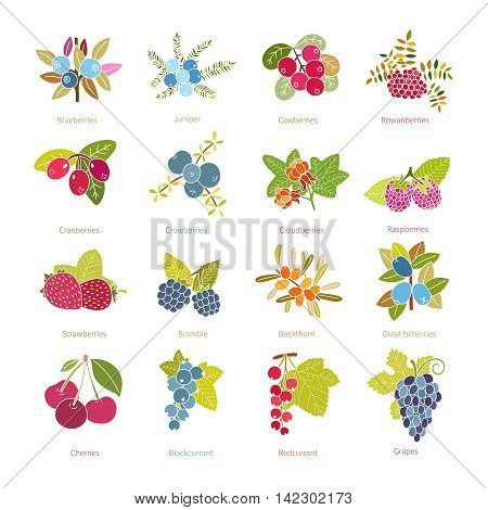 Set Of Vector Flat Style Berries Isolated On White