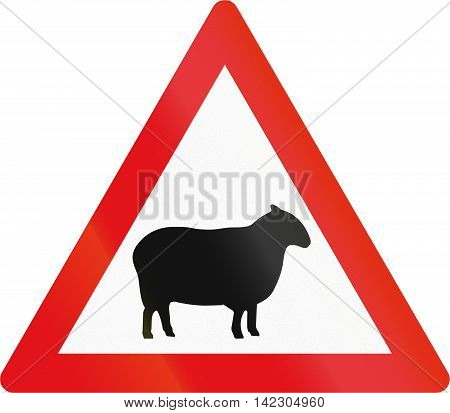 Road Sign Used In The African Country Of Botswana - Sheep