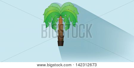 A green palm tree with brown stem and shadow over white blue background flat style. Digital image vector