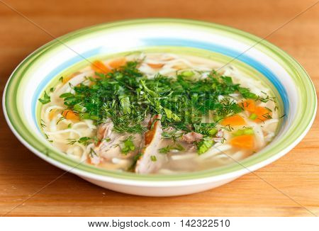 Chicken Soup With Noodles And Vegetables In Ceramic Bowl