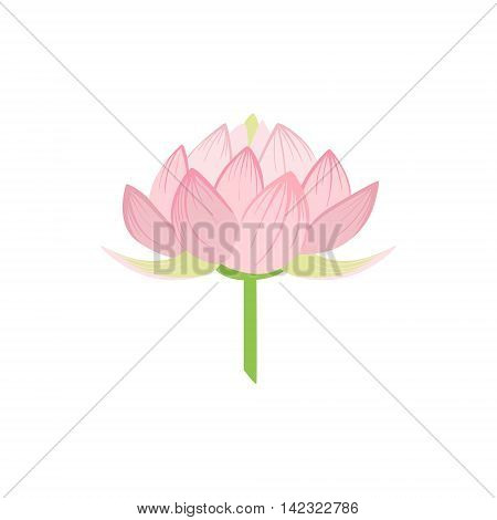 Padma Lotus Sacred Indian Flower Country Cultural Symbol Illustration. Simplified Cartoon Style Drawing Isolated On White Background