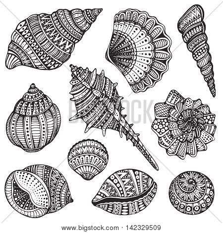 Set of hand drawn vector ornate seashells. Ten black illustrations of shells isolated on white background for coloring book, tattoo, print on t-shirt, bag