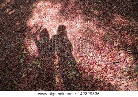 man and girl shadow on a red dry leave with sun light on a midlle of picture shadow of lovers couplehappy moment