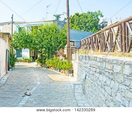 The quiet street with the cat lying on the road Kato Drys Cyprus.