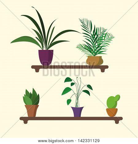 houseplants on shelf in flat design in vector
