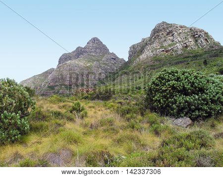 Back Of Table Mountain, Cape Town South Africa