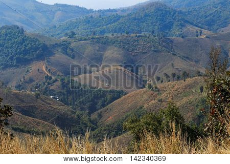 Agriculture on high mountain with dried plantation and road