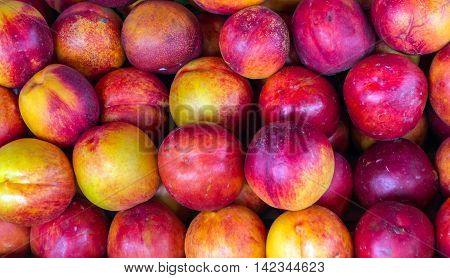 ripe nectarines for sale at vegetable market in summer