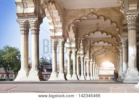 columns in palace - Agra Red fort India