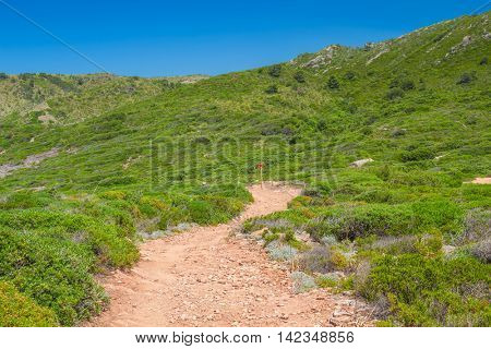 Unsurfaced walkway among green hills with runt plantsin summer sunny day at Menorca island; Balearic islands; Spain.