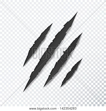 Claw scratches on transparent background. Vector illustration.