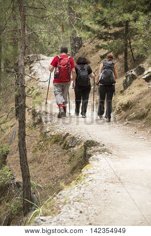 Hikers in Samaria Gorge National Park of Greece on the island of Crete