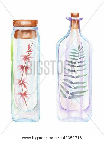 Illustration romantic and fairytale watercolor bottles with forest branches with leaves inside, hand drawn isolated on a white background
