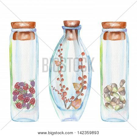 Illustration romantic and fairytale watercolor bottles with strawberry and raspberries, autumn leaves and red berrie branches, oak acorns inside, hand drawn isolated on a white background